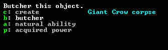 dwarf-fortress-adventurer_21
