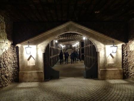 Drumul vinului Basarabia:  Intrare - colectia de vinuri Milestii Mici