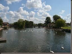 Stratford 2014 004