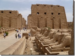 2012-04-05 Safaga, Egypt- Valley of the Kings, Luxor Temple 131