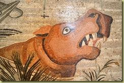 Animal scene detail