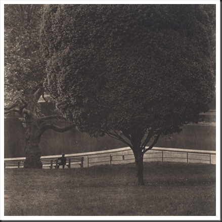 central park #21