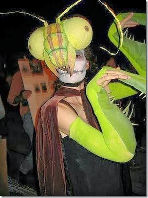 mantis religiosa disfrazcasero (6)