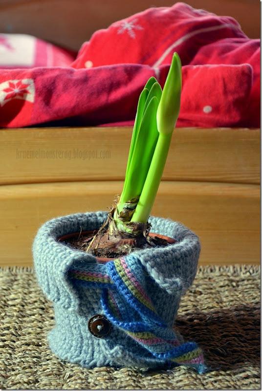Winteroutfit für Blumentöpfe