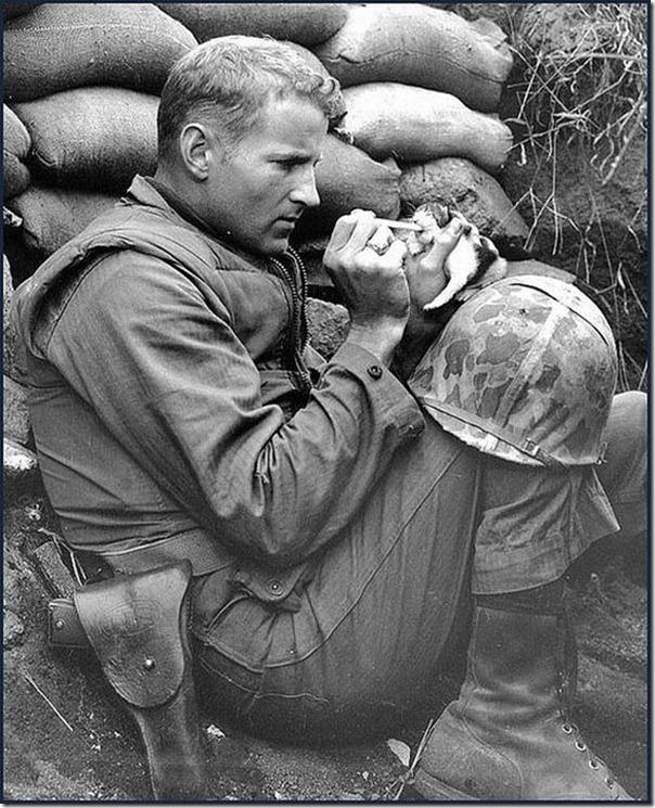 Soldados e animais de estimação (6)