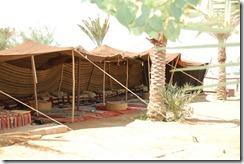 Oporrak 2011 - Jordania ,-  Mar Muerto , 18 de Septiembre  57