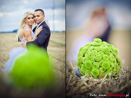 Sesja ślubna - sesja fotograficzna - Wrzesnia