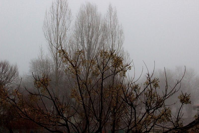 invernales