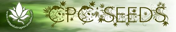 banner_cpc_flower