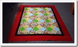 parkview habitat quilt top 2