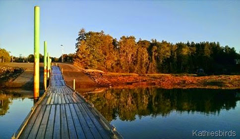 8. boat ramp at Mere Point 9-12-14