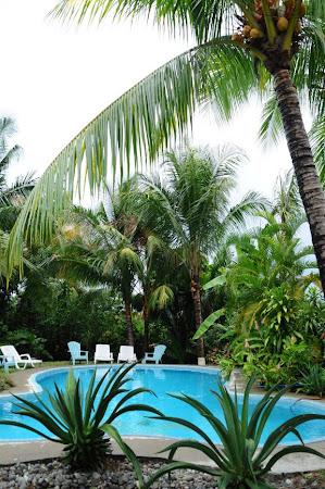 Cazare Costa Rica: Entre Dos Aguas - piscina tropicala (Samara)