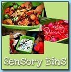 Sensory-Bins6222