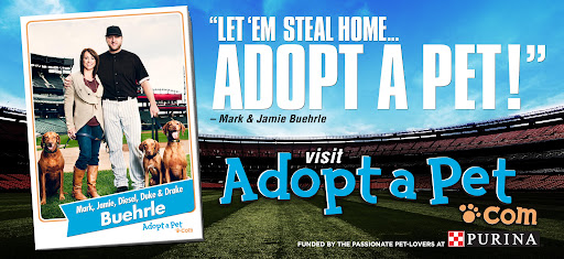 These adoption-promoting billboards featuring Mark and Jamie are currently up all over the Chicagoland area.