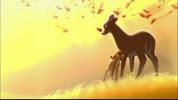 14 la mère de Bambi