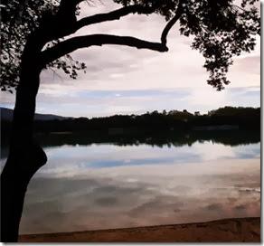 L'étang de la Bonde Autora Natalia Itabayana