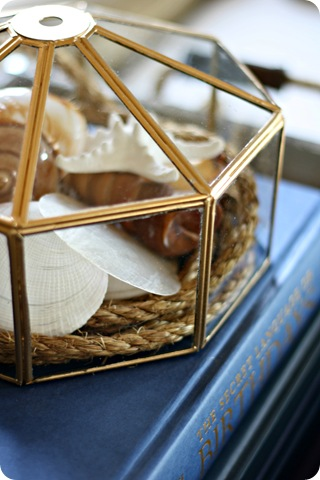 seashells cloche