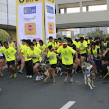 Pet Express Doggie Run 2012 Philippines. Jpg (37).JPG