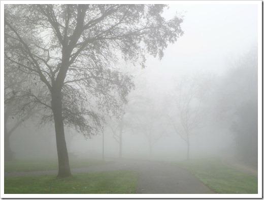121211_fog_31