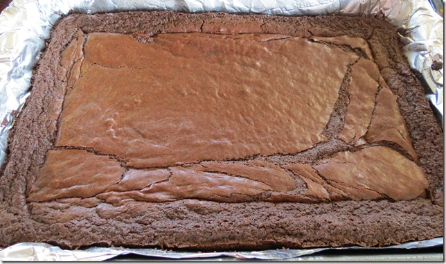 Fudgy, Gooey Brownies