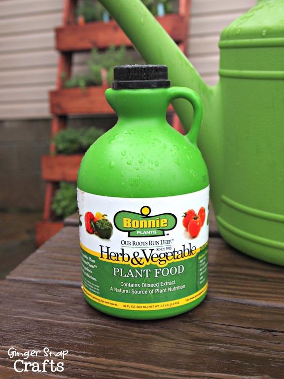 #dig herb & vegetable plant food