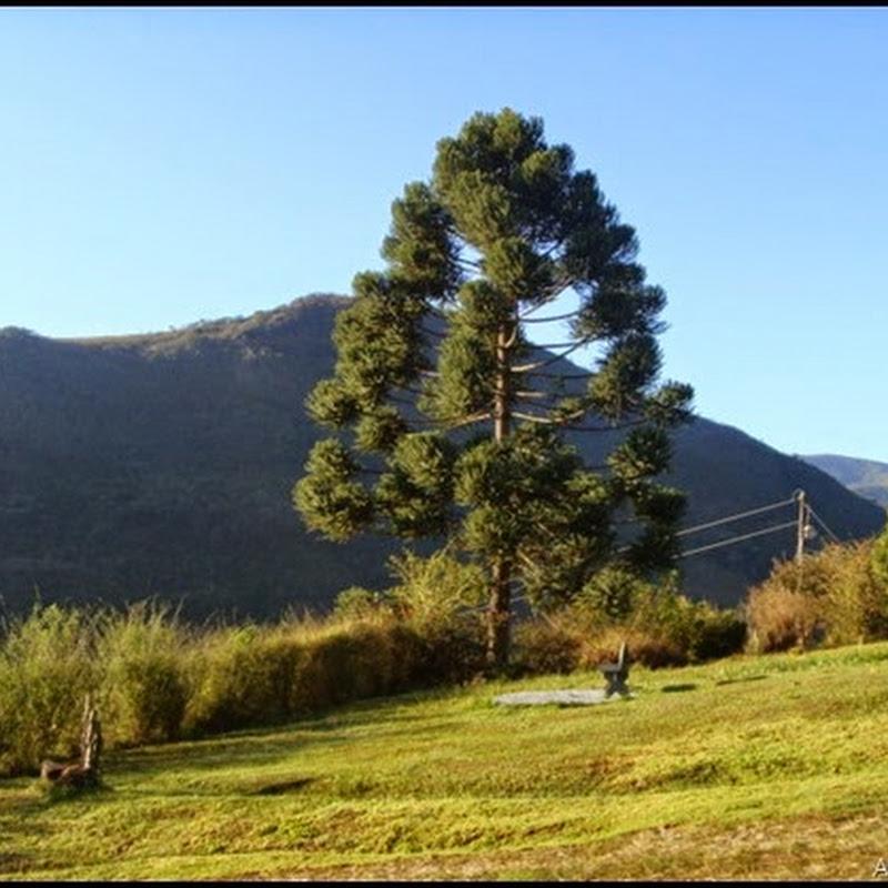 Cicloturismo na Serra da Mantiqueira– Segundo dia