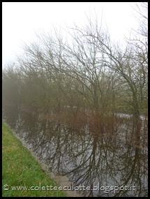 Passeggiata al Dosolo - 17 febbraio 2014 (4)
