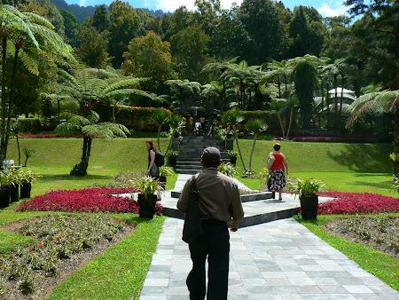 Bali picture: Botanical garden
