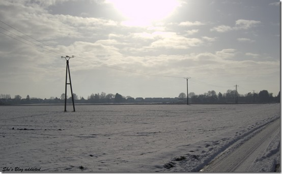 Winter2015 (25)