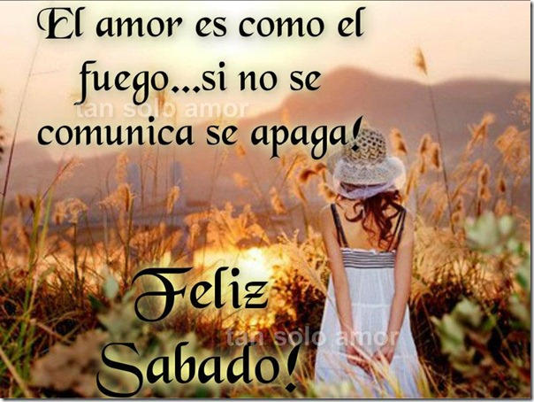 amor facebbok (35)