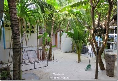 馬爾地夫居民島Mahibadhoo- Amazing Guesthouse (49)
