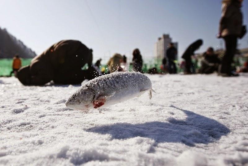 sancheoneo-ice-festival-2
