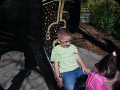 5-25-2011 zoo field trip 009