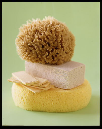 There are so many great sponges on the market.  I love the pop up kind because they're packaged flat so it's easy to store a lot of them.