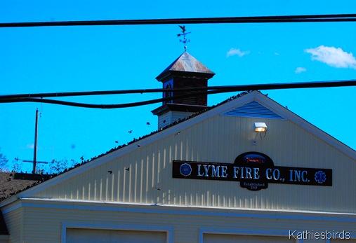 1. Old Lyme-kab
