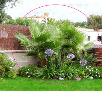 Como decorar un jard n con plantas dise o y decoracion - Decorar el jardin con poco dinero ...