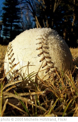 'Baseball, anyone?' photo (c) 2005, Michelle Hofstrand - license: http://creativecommons.org/licenses/by-nd/2.0/