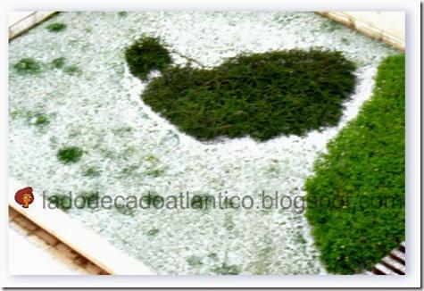 Imagem de granizo cobrindo boa parte da grama deste canteiro, início da primavera de 2013.