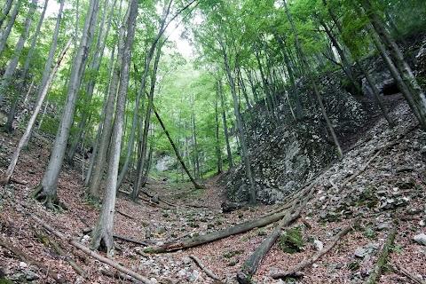 Antonova jaskyna, vpravo hore.