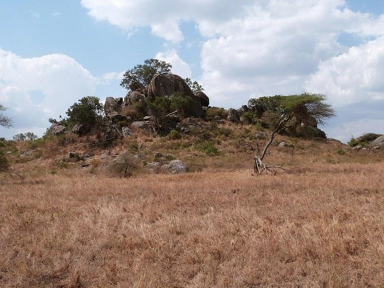 kopje-serengeti-2