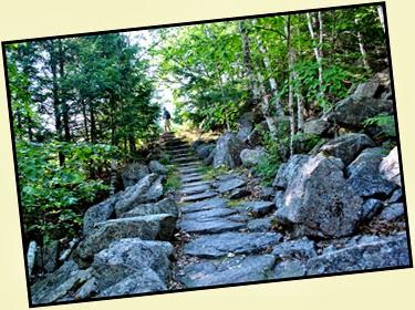 02e - Emory Path -  more steps up