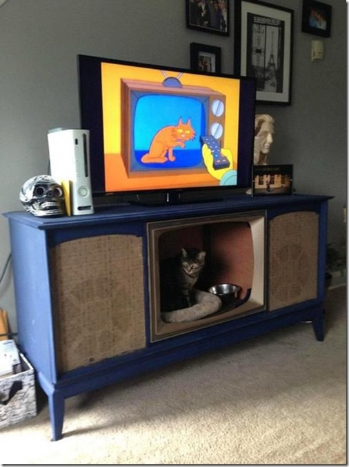 awesome-pet-owners-18