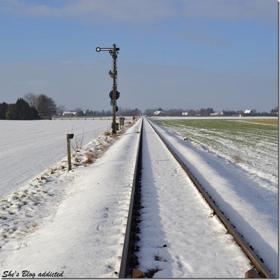 Winter2015 (32)