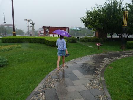 Desculta in ploaie