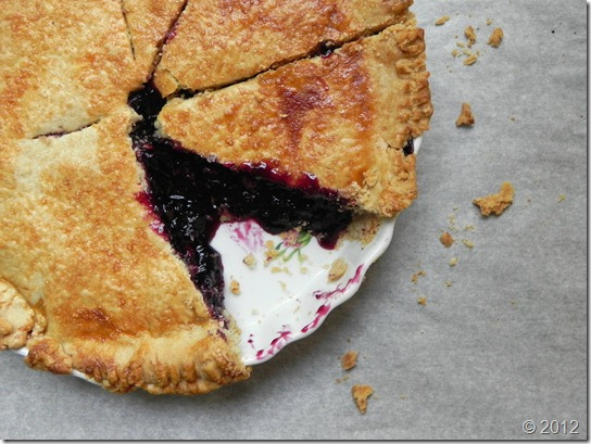 blueberry-limoncello-pie-with-sourdough-crust-2