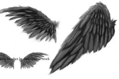 Pinceles de alas abiertas