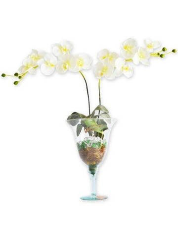 arranjo-de-flores-orquideas-vaso-1926