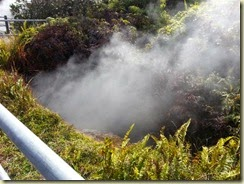 20150118_Steam Vent (Small)