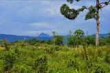 Gunung Niut from afar (Thomas Ulrich, June 2012)