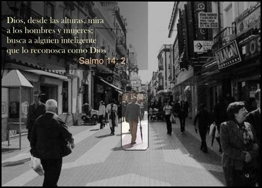 SALMOSLLORO08